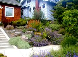 Rock Garden Landscaping Ideas by Wonderful Rock Landscaping Front Yard For Contemporary Home Yards