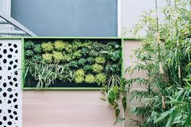 outdoor building a living wall vertical garden kit india