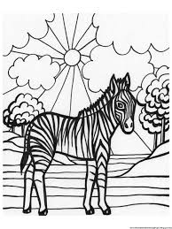 zebra color page coloring zebra pages free printable zebra coloring pages for kids