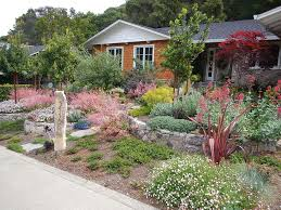 Ideas For Backyard Landscaping by Drought Tolerant Backyard Landscaping Ideas Drought Tolerant