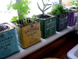 kitchen herb garden ideas best ideas for planning a kitchen herb garden appy bistro