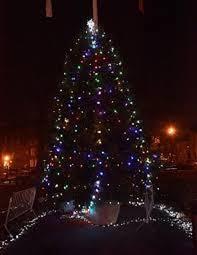 Singing Christmas Tree Lights 2nd Annual Tree Lighting At Herbert Von King Park Von King Park