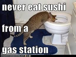 Gas Station Meme - never eat sushi from a gas station lolcats lol cat memes