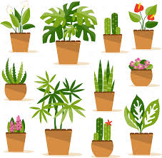 houseplants by artbesouro graphicriver