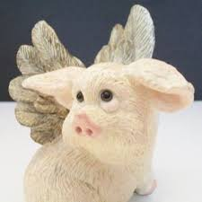 658 best flying pigs images on flying pig piglets