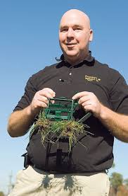 how to rid your yard of moles features charleston city paper