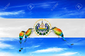Salvadoran Flag El Salvador Central America Independence Day 15 September