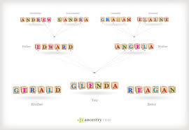 understanding patterns of inheritance where did my dna come from