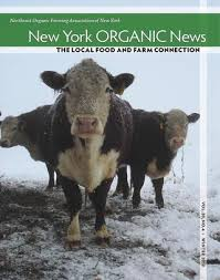 Creature Comforts Front Street Binghamton Summer 2012 New York Organic News By Nofa Ny Issuu