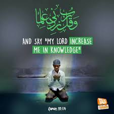 quote with knowledge comes power 200 beautiful quran quotes verses u0026 surah with pictures
