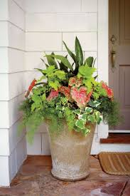 Mythos Silverline Greenhouse 28 Best Garden Checklist March Images On Pinterest Gardening