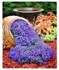 spilling flowers 100 container garden ideas for arkansas texas