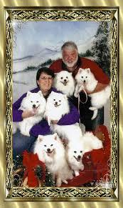 american eskimo dog washington state sa about us