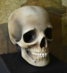 skull helmet costume prop halloween dino rentos studios inc