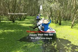 tra eco tours chau doc the beauty of tra su cajuput forest best