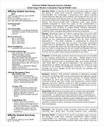 financial business plan template the financial plan template