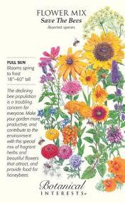 Club Summer Garden - how to start a garden club quick and easy ideas http cbi as