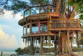 cool tree houses creative tree house design myohomes