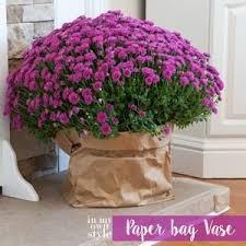 Fall Vase Ideas The 25 Best Fall Vase Filler Ideas On Pinterest Coffee Bean