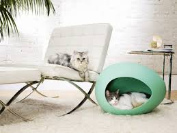 Modern Design Cat Furniture by Contemporary Cat And Small Dog House Designs