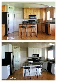 painting kitchen cabinets before and after pictures traditional
