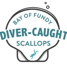 diver caught scallops u2013 1 lb frozen portion u2013 afishionado fishmongers