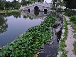 Beijing Botanical Garden Beijing Botanical Garden Hack By Toxic Dz