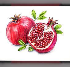 doodlewash happy pomegranate month