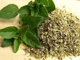 les herbes de cuisine la botte secrète des herbes aromatiques faites le vous même
