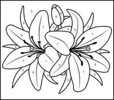 download print printable color number coloring pages