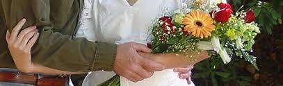 Timberwolf Creek Bed Breakfast Smoky Mountain Weddings Mountain Elopements Woodland Weddings