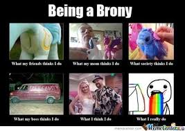 Brony Memes - being a brony by dremiss meme center