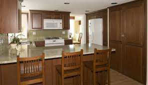 cabinet thrilling cheap kitchen cabinet malaysia inspirational