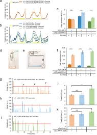 regulation of starvation induced hyperactivity by insulin and