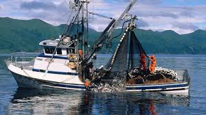 cleaner fuels for fishing boats could backfire on the climate