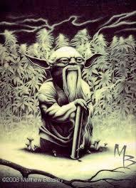 Meme Generator Yoda - weed yoda blank template imgflip