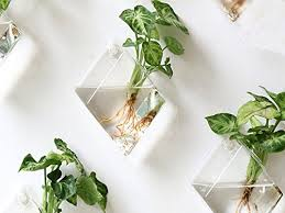 add some nature to your workspace with these 19 remarkable planters