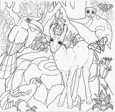 tropical coloring pages best landscape jugle u0026 rainforest coloring pages for kids