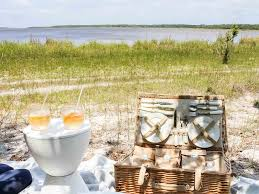 bohemian luxe interiors pearls to a picnic shariluxtravel