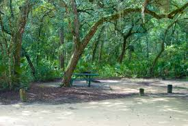 Anastasia State Park Map by Camping In Florida Florida Hikes