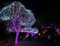 Zoo Lights Phoenix Holidays In Phoenix At Zoolights