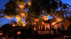 Tree Chandelier Los Angeles California Chandelier Tree Hd 2015 Youtube