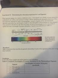 the absorption of light by photosynthetic pigments worksheet answers solved experiment 2 determining the absorption spectrum