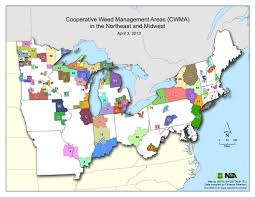 Map Of The Northeast Inpaws Invasive Species Groups