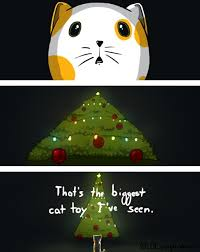 Christmas Memes Tumblr - cat finds its christmas present early in comic by you get cake
