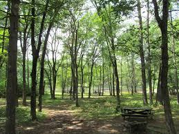 pearl hill state park wikipedia