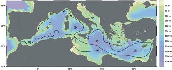 Map Of Ocean Currents The Uniqueness Of Planktonic Ecosystems In The Mediterranean Sea