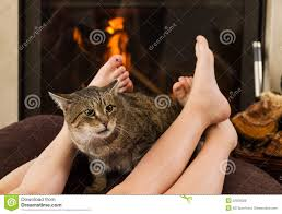 cat and feet in front of the fireplace stock photo image 52026028