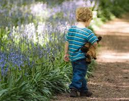 Bench Warrant Child Support Amnesty Program Will Clear Child Support Bench Warrants Michigan