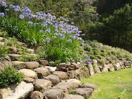 Rocks In Garden Ilandscape Products Rock Wall And Garden Grouse
